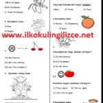 2.Sınıf 9.Ünite Değerlendirme Testi