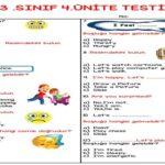3. Sınıf İngilizce 4. Ünite Testi (25 Soruluk)