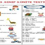 3.Sınıf 3.Ünite Testi (25 soruluk)